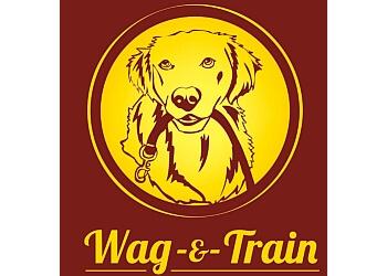 Kitchener pet grooming Wag & Train