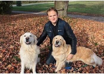 Kitchener dog trainer Wag and Walk