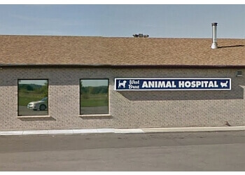 Brantford veterinary clinic West Brant Animal Hospital