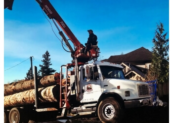 Maple Ridge tree service Whieldon & Son Logging Ltd.