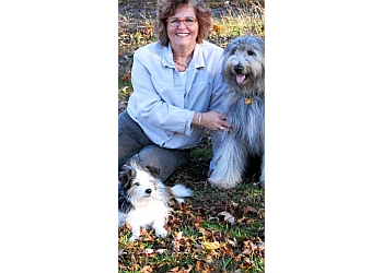 Ajax dog trainer Who's Walking Who Inc.