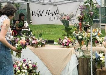 Toronto florist  Wild North Flowers