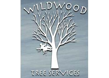 Fredericton tree service Wildwood Tree Services