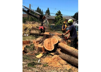 Wilson Tree Care