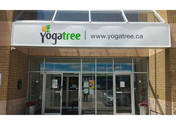 Vaughan yoga studio Yoga Tree