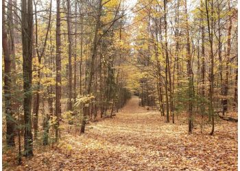 Newmarket hiking trail York Regional Forest