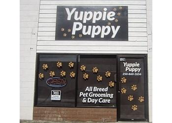 Kelowna pet grooming Yuppie Puppy