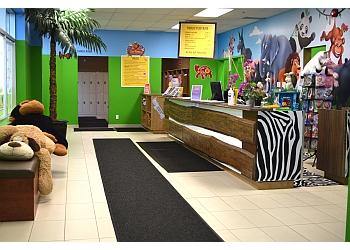 Zooland Indoor Play Centre