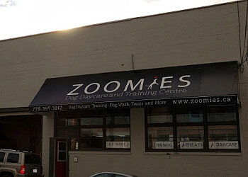 New Westminster dog trainer Zoomies Dog Daycare and Training Centre