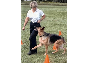 North Vancouver dog trainer dogWISE training & behaviour center
