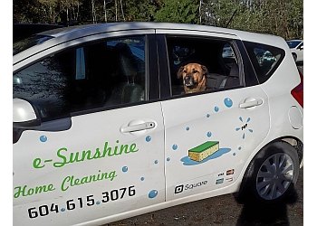 e-SunshineCleaning.com