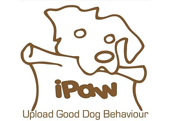 Burnaby dog trainer iPaw Dog Training